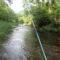 渓流釣りのような鮎釣り